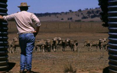 Drought Communities Programme