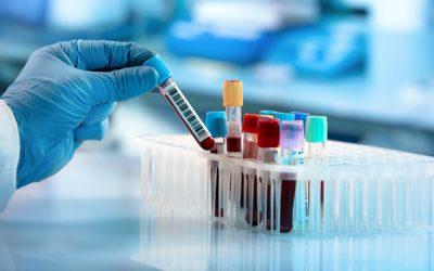 Biomedical Translation Fund (BTF)