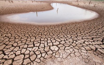 Building Better Regions Fund Round Four: Drought Support
